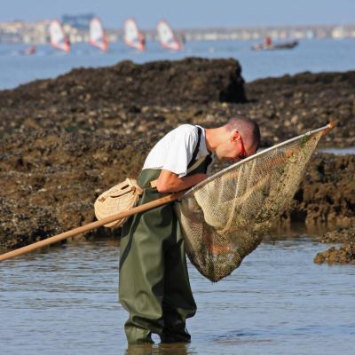 Mormychka sur le brochet pour la pêche dhiver