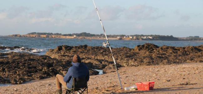 Pêcher le bar en surfcasting