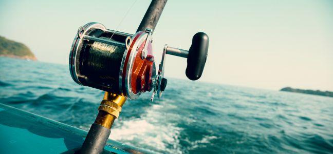 La pêche du calamar à la traîne