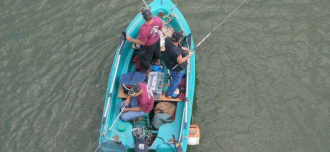 Conseil sur le matériel pour pêcher le lieu à la mitraillette