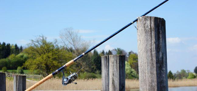 Conseil sur le matériel pour pêcher le bar au jig