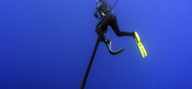La pêche sous-marine