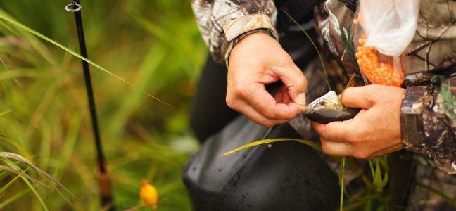 La pêche à rôder