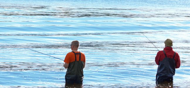Pêche à la grattée